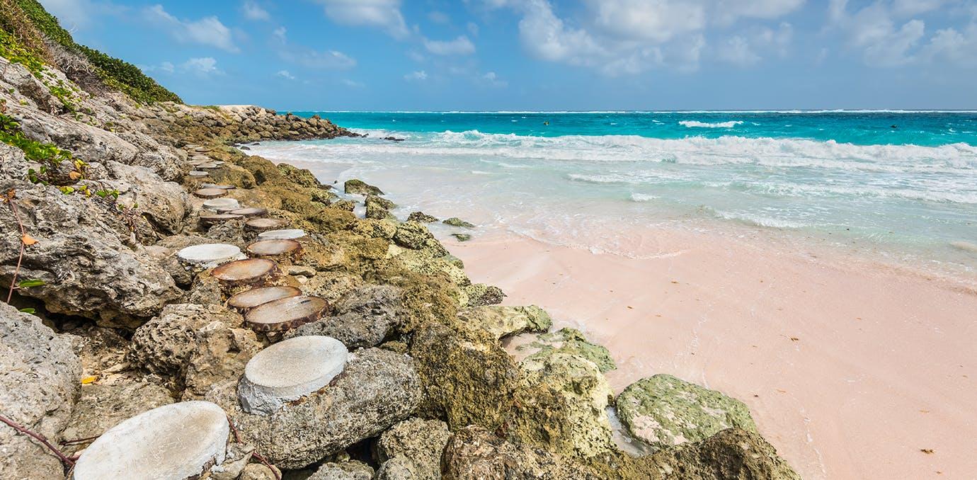 crane beach barbados pink sand beach psd