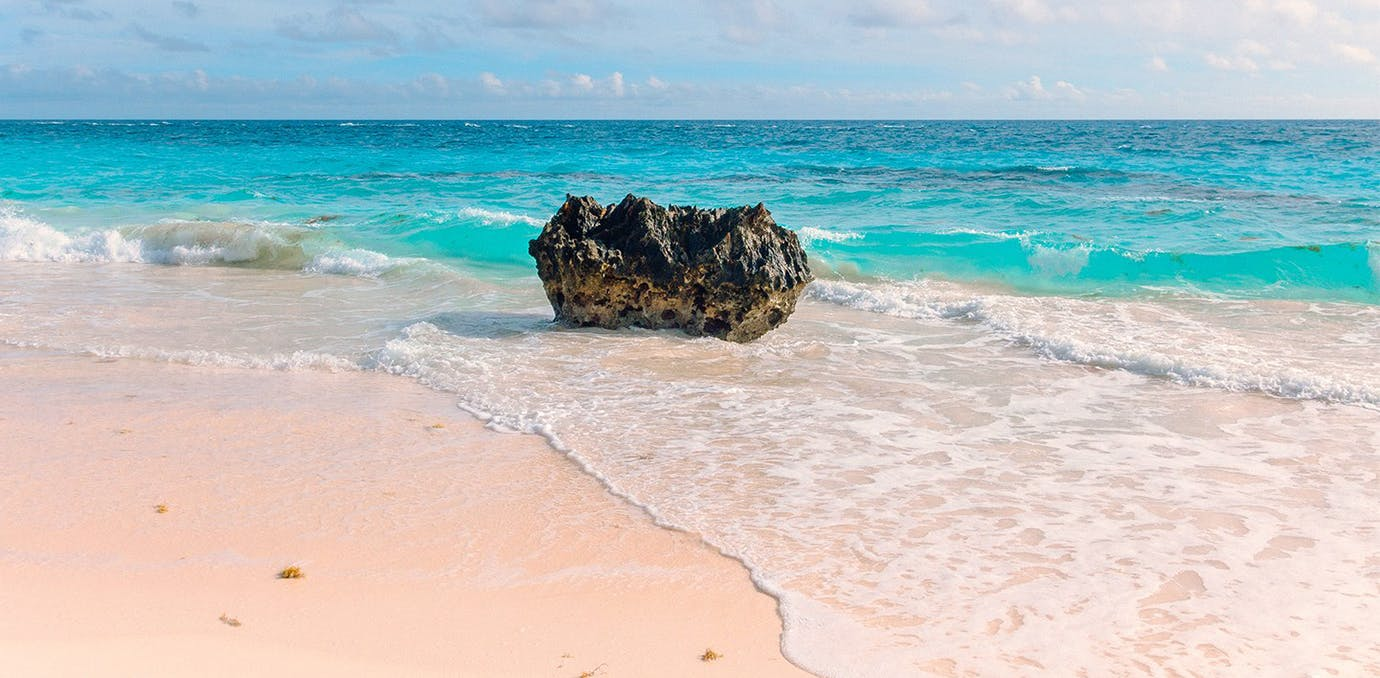 elbow beach bermuda pink sand beach psd