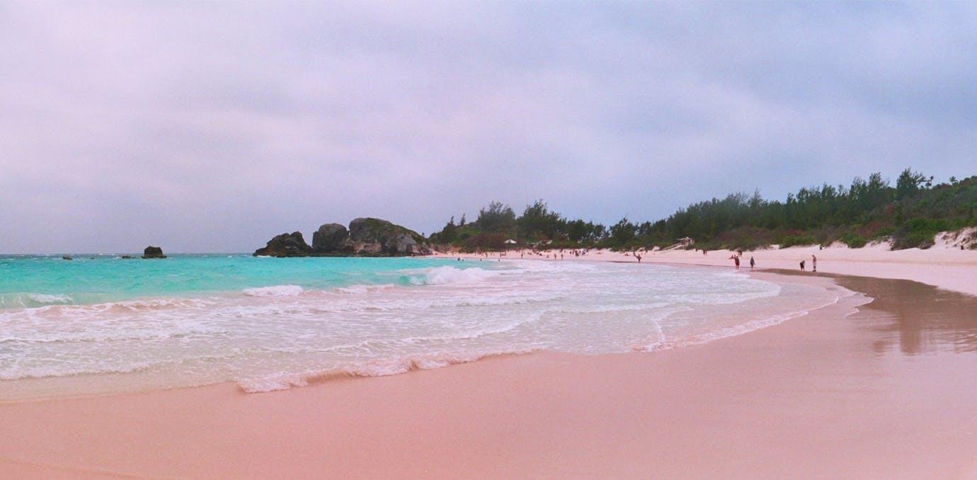 horseshoe bay bermuda pink sand beach psd