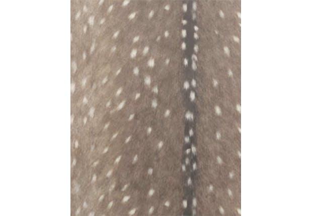 removable walllpaper texture 1