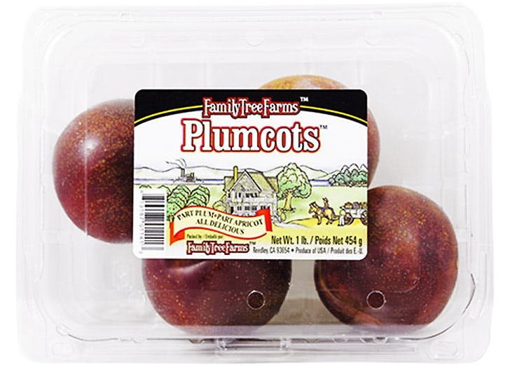 trader joes plumcots 524