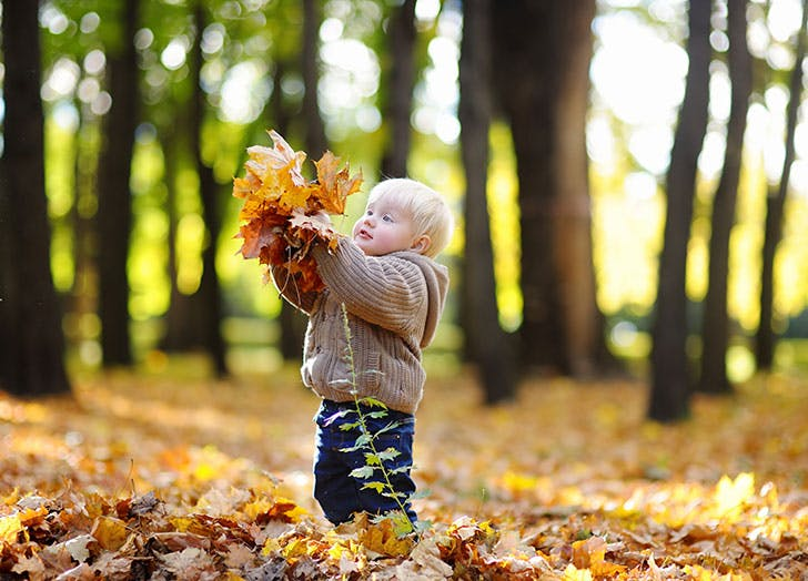 Cute baby playing with dried autumn leaves in forest