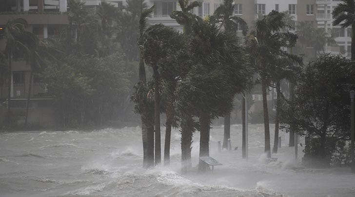 Here's How to Help Victims of Hurricanes Harvey, Irma and Jose, Right Now from Your Computer