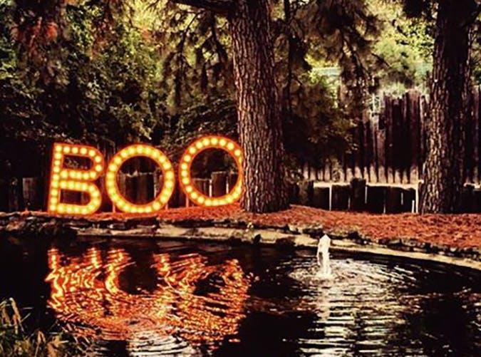 Little Rock Zoo Halloween