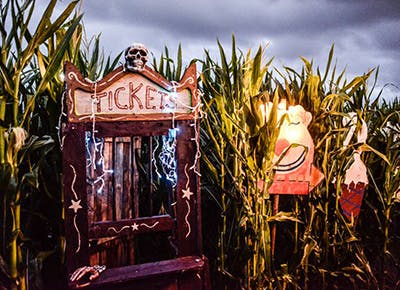 Stalker Farms Haunted Attractions in Washington 400