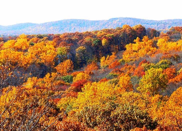 bear mountain fall foliage NY
