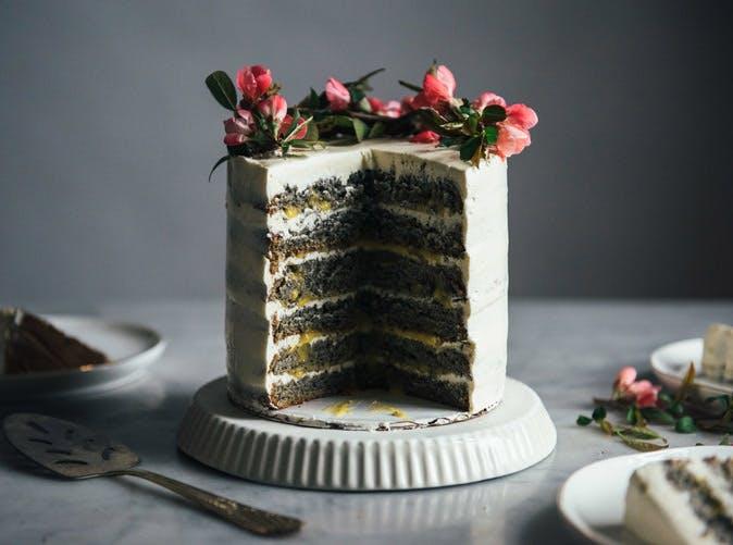 black sesame cake citrus curd 501