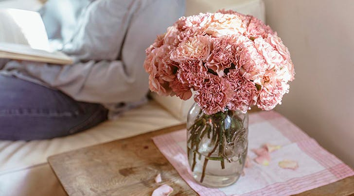 We Kid You Not: Carnations Are Trending