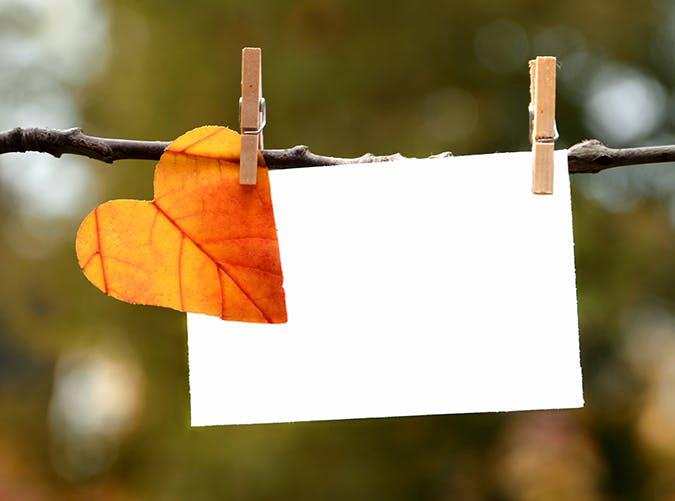 fall bucket list 44
