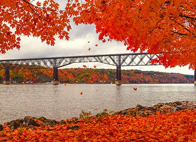 fall foliage NY 400