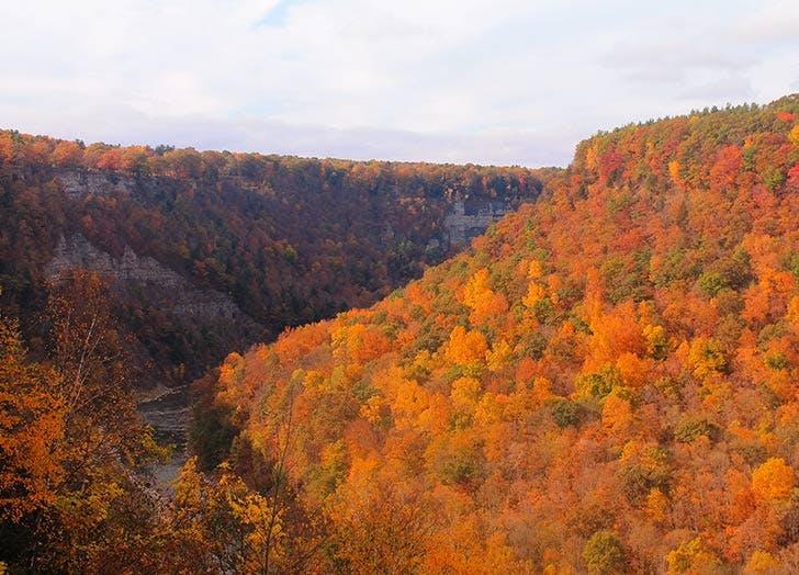 letchworth state park fall foliage NY