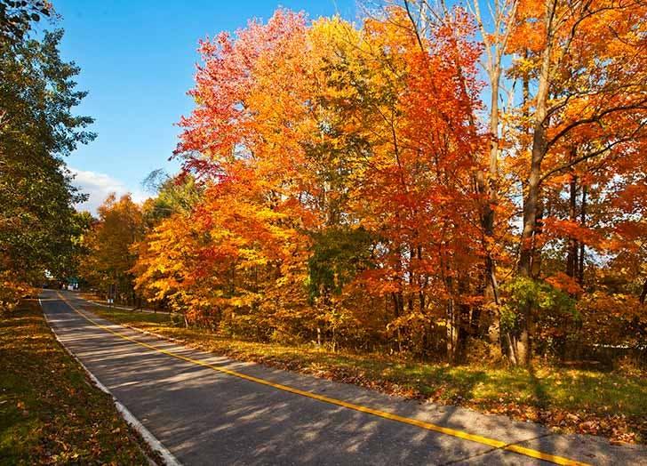 palisades interstate fall foliage NY