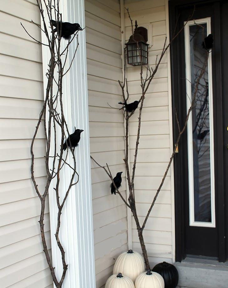 raven porch 728