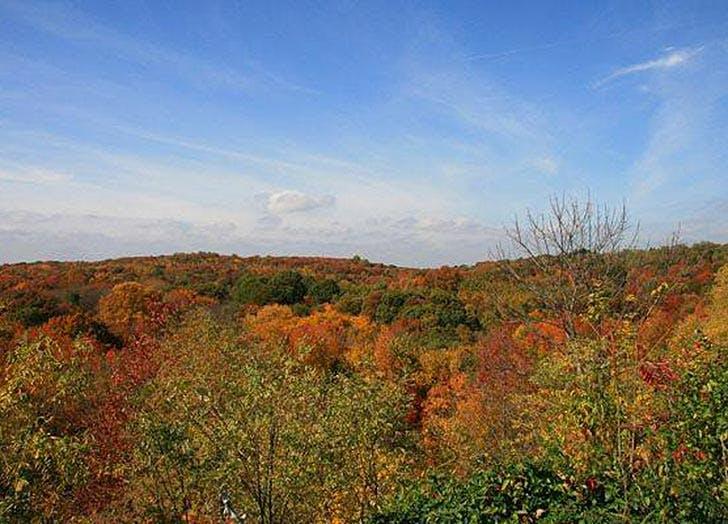 staten island greenbelt fall foliage NY
