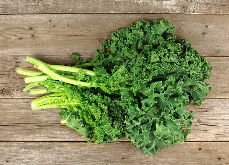 types of kale curly kale 524