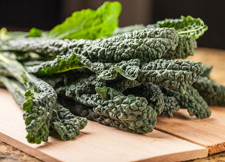 types of kale lacinato 524
