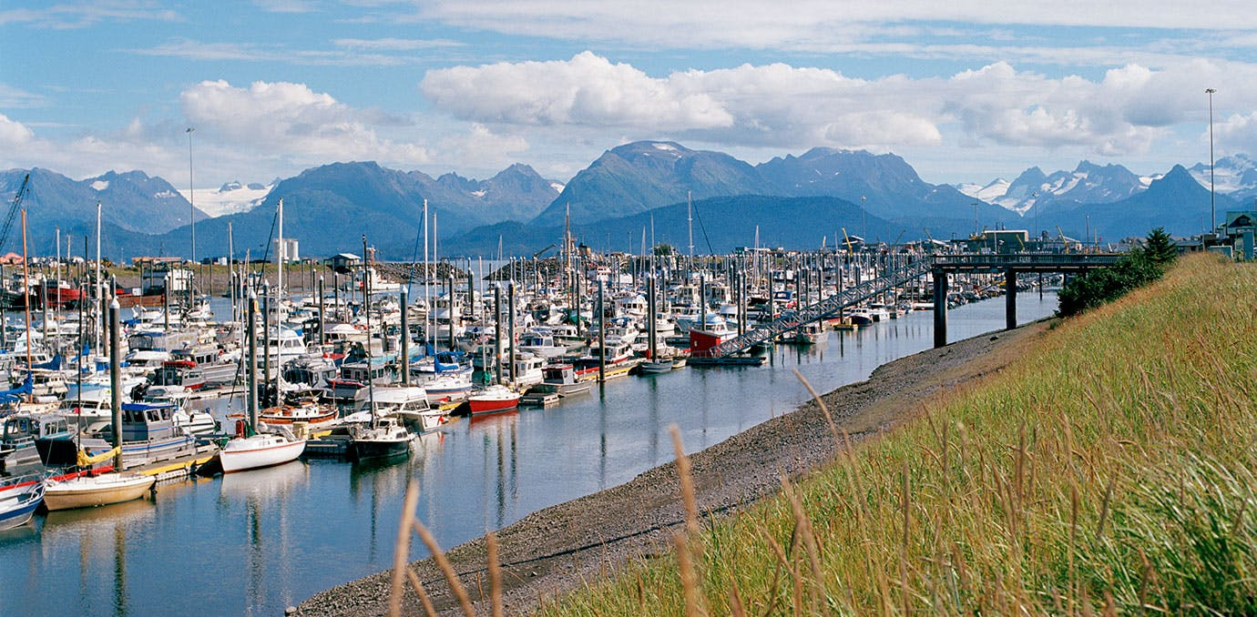 Boats in the cute town of Homer in Alaska