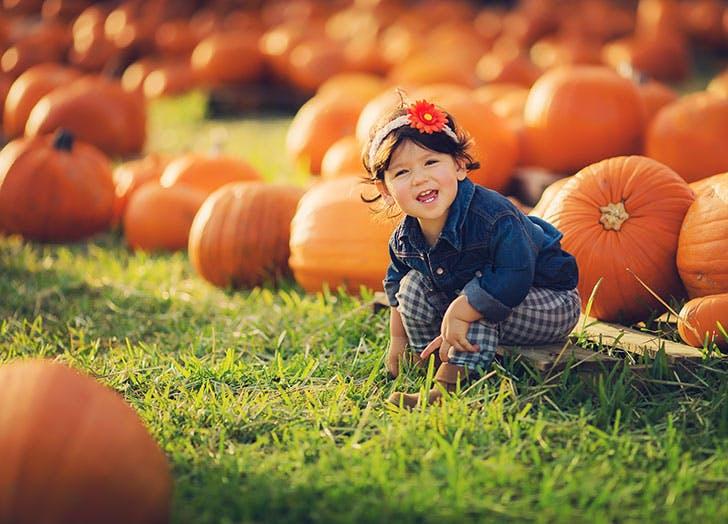 Cute little girl in a pumpkin patch