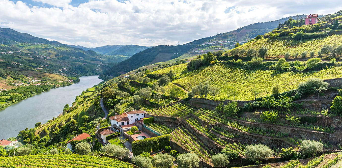 Douro  Portugal wine region