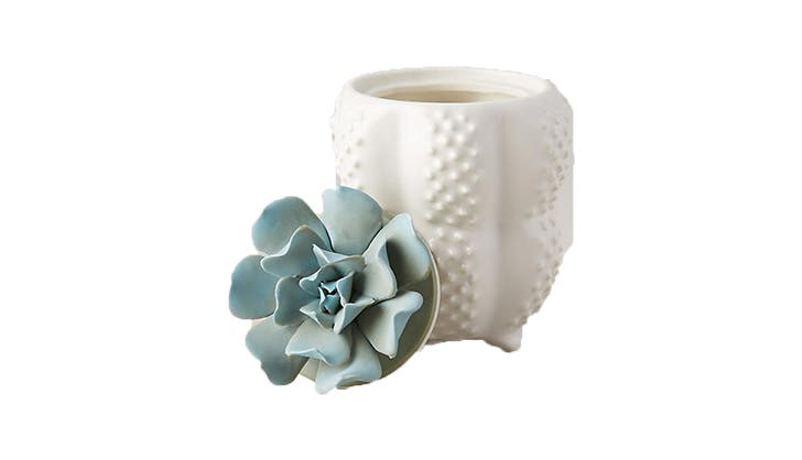 Gift ideas for bosses   succulent candle