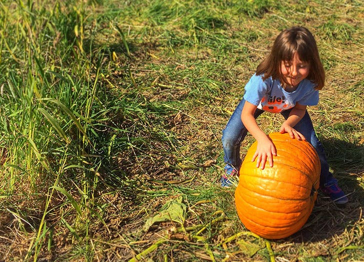 Girl playing pumpkin roll Thanksgiving game