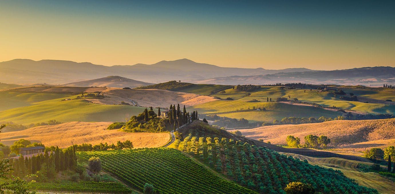 Rolling hills and vineyards in Tuscany Italy