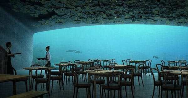 europe 39 s first underwater restaurant looks amazing purewow. Black Bedroom Furniture Sets. Home Design Ideas
