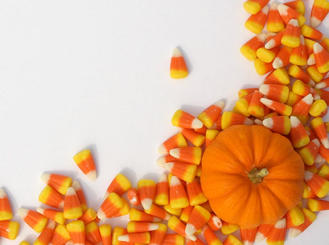 candy corn mini pumpkin 501