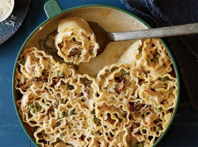chicken alfredo lasagna roll ups 501