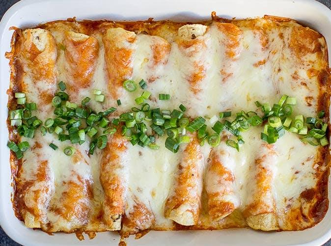 creamy chicken enchiladas 5011