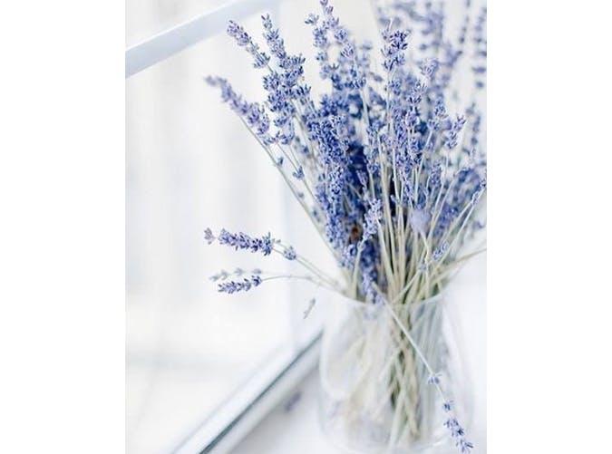 falldecor lavender