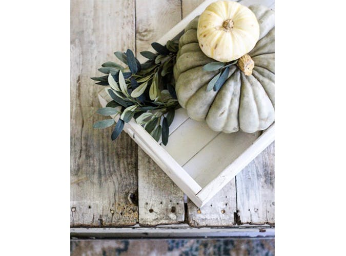 falldecor tray