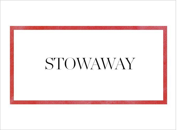 675x501    Stowaway