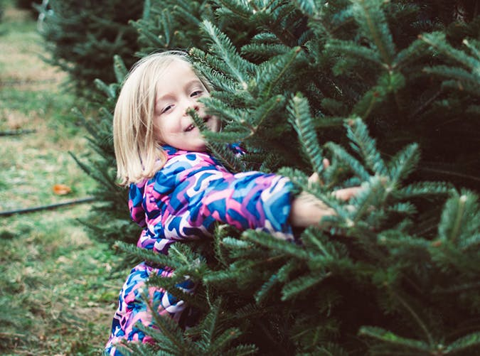 Family holiday activities 2017 17