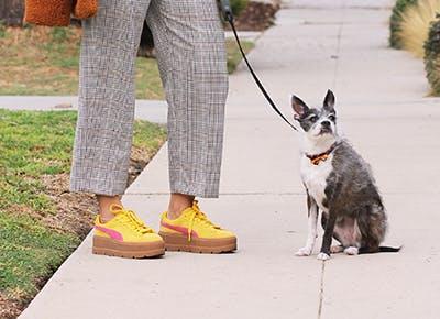 LA comfortable fall shoes 400