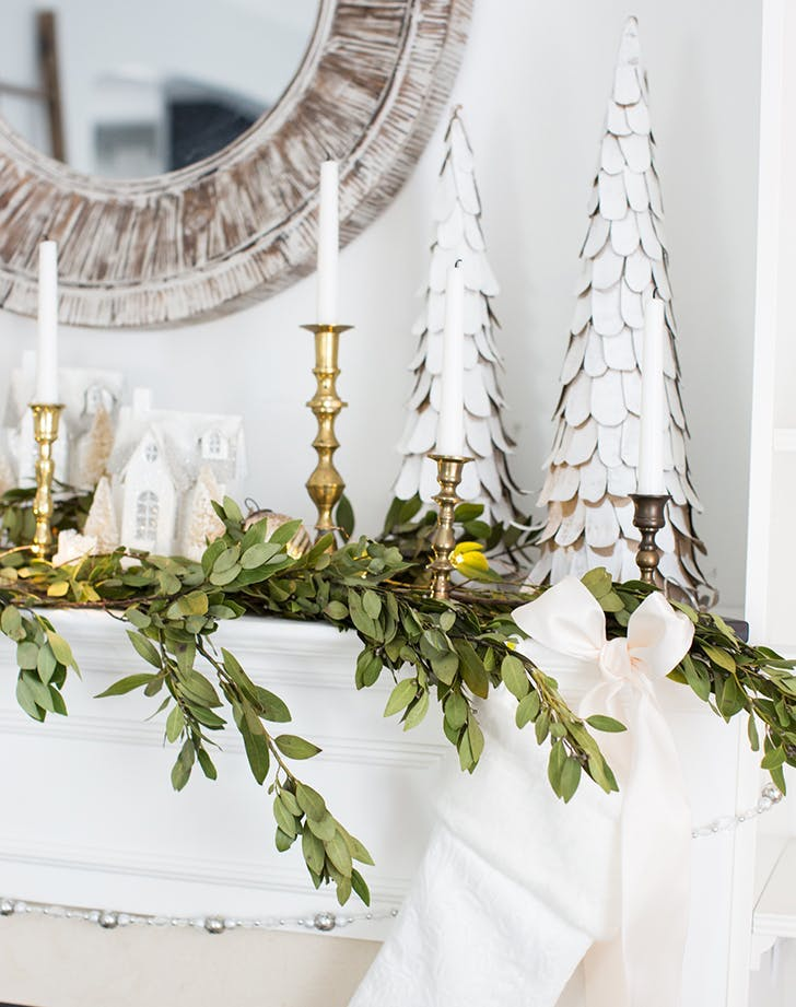 bay leaf holiday trend