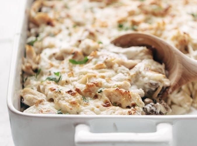 chicken tetrazzini recipe 501