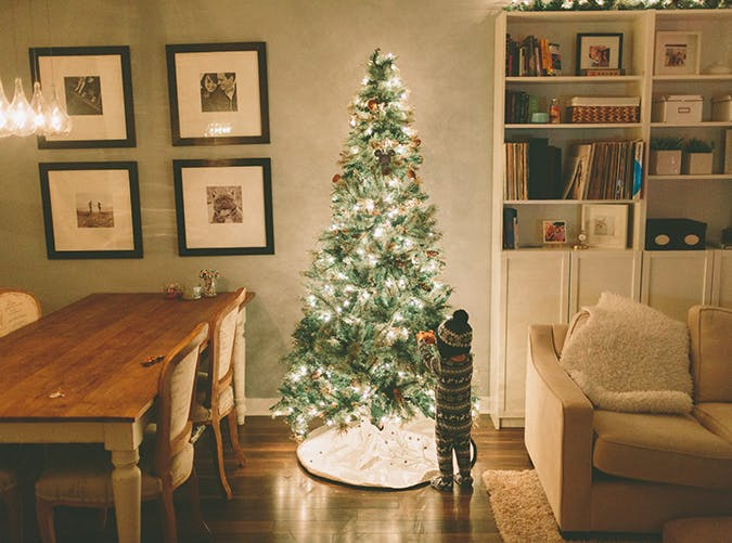 30 Fabulous (and Practically Free) Things to Do with Your Family This Holiday Season