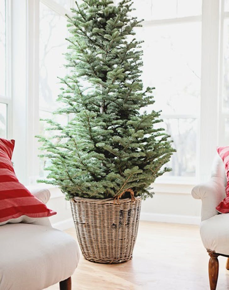 wicker skirtholiday trend