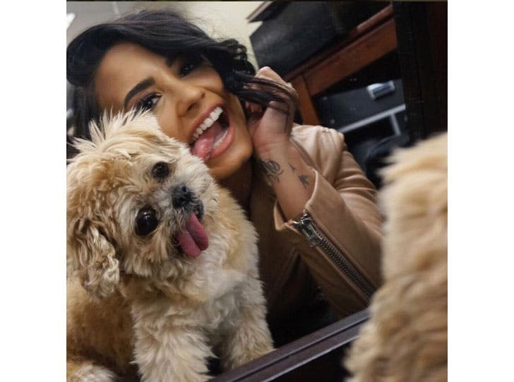 Marnie the dog with Demi Lovato Instagram famous pet