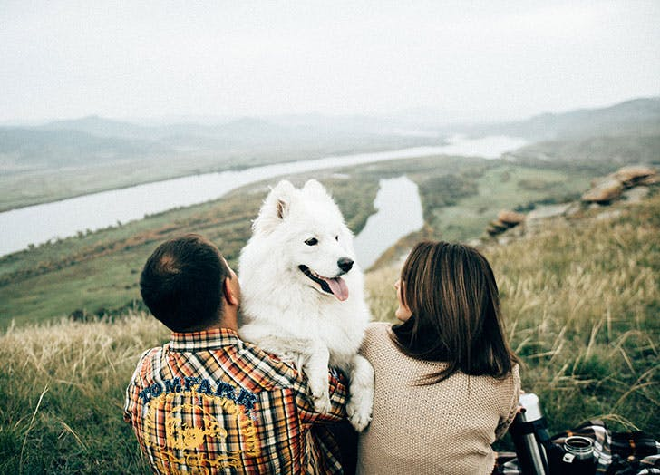 Pretty white dog with owners outside