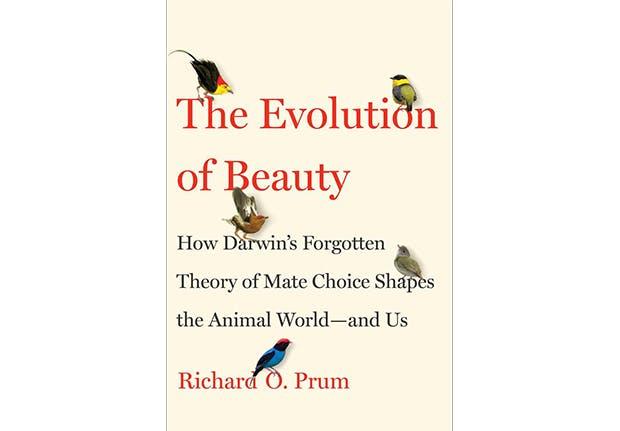 best books 2017 prum