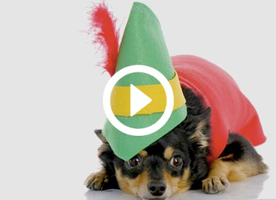 diy holiday elf hat 400x290 category image