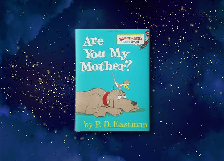 Are You My Mother  by P.D. Eastman bedtime story for kids