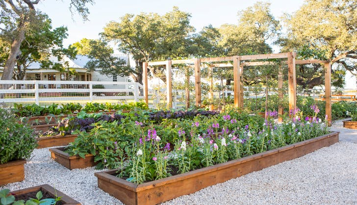 Chip Joanna Gaines Garden Project garden