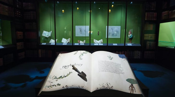 Grab Your Broomsticks, the 'Harry Potter: A History of Magic' Exhibit Is Coming to New York
