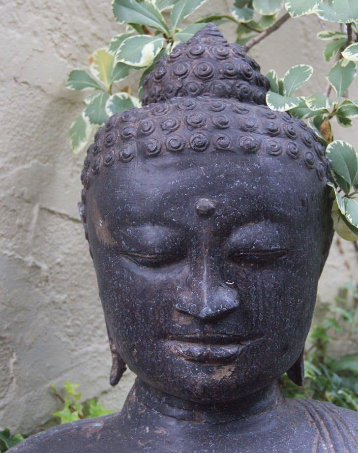 Slow Beauty Buddha 728x921