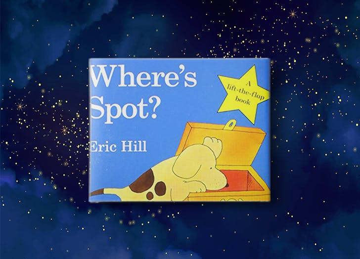 Where s Spot  by Eric Hill bedtime book for kdis