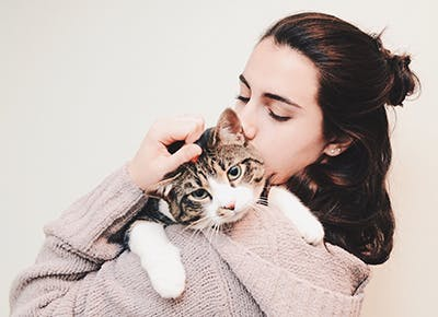 easy ways to improve your cats health 400