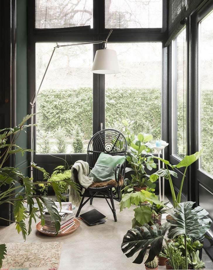 winter garden room10